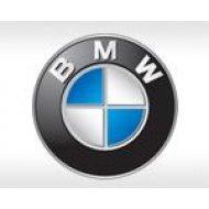 Лампы и комплекты ксенона для BMW (39)