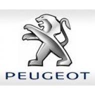 Лампы и комплекты ксенона для PEUGEOT (15)